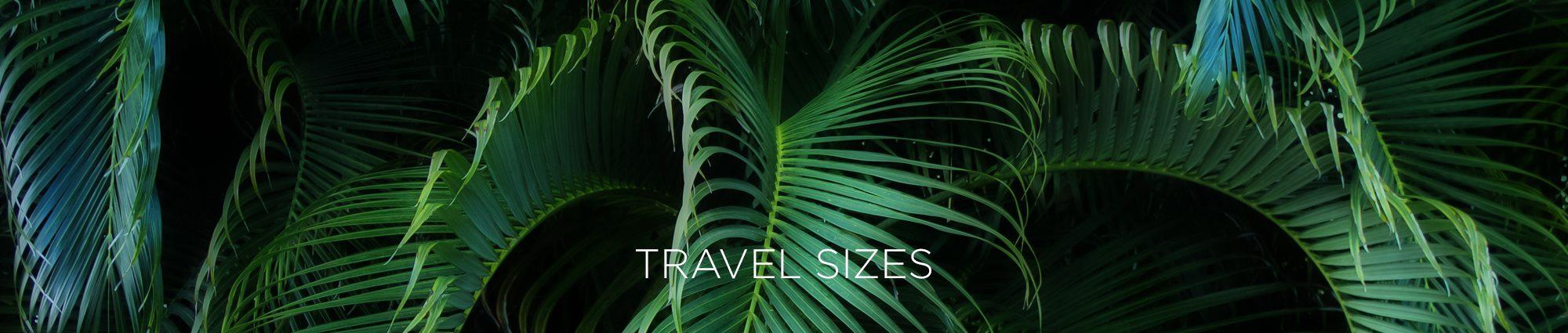 travelsizesheader